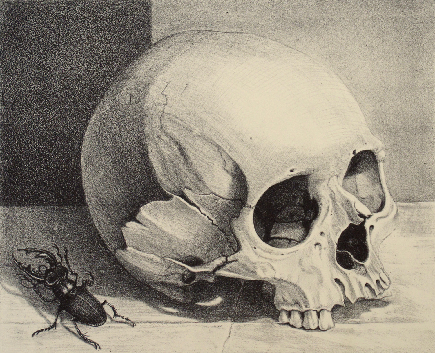 Skull with Scarab